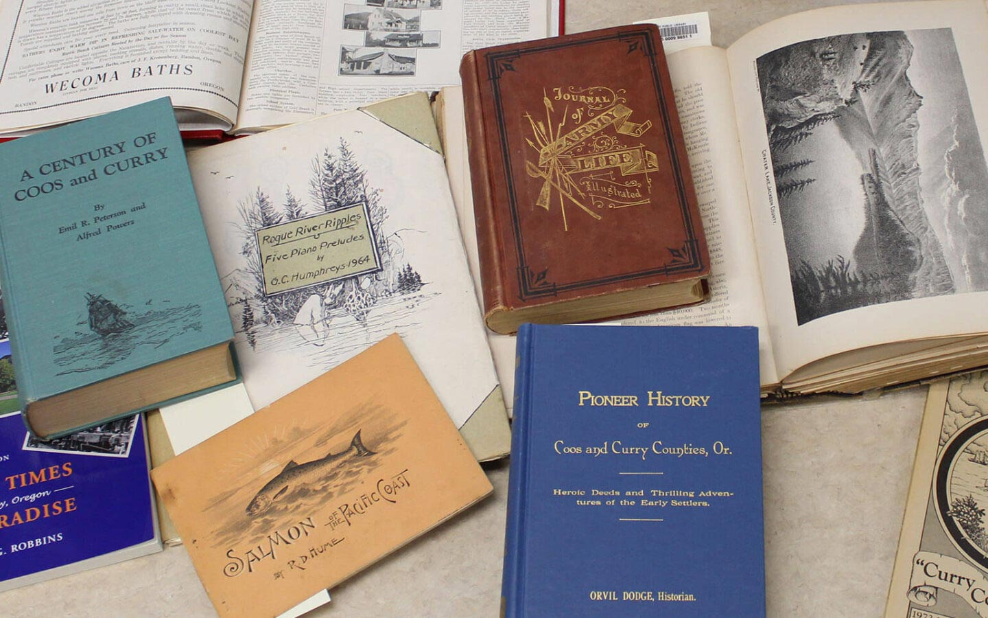 Local History Collections